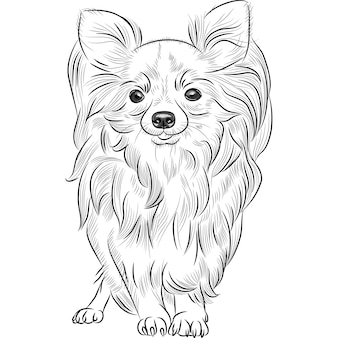 Grayscale sketch of the cute dog chihuahua breed smiling