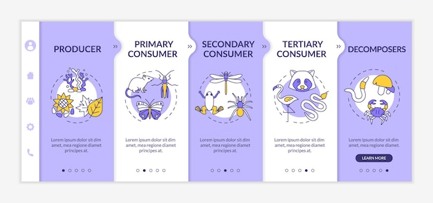 Grazing food chain onboarding vector template. energy producer, consumers and decomposers. responsive mobile website with icons. webpage walkthrough step screens. rgb color concept