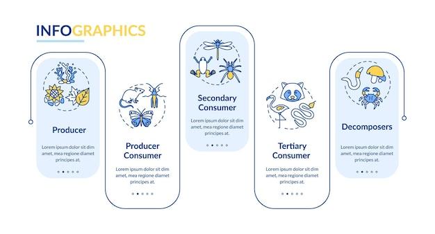 食物連鎖ベクトルインフォグラフィックテンプレートを放牧します。エネルギー生産者と消費者のプレゼンテーションのデザイン要素。 5つのステップによるデータの視覚化。タイムラインチャートを処理します。線形アイコンのワークフローレイアウト