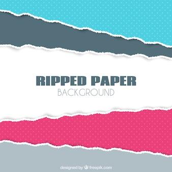 Большой фон из разорванной бумаги с различными цветами