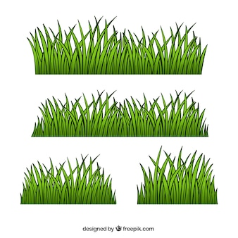 Great grass borders with different designs