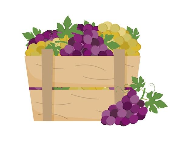 木箱に緑と紫のブドウ熟したブドウの木枠ワイナリーワイン製造農場