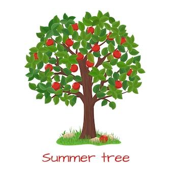 Зеленая яблоня. летнее дерево. природа сад, урожай и ветка, векторные иллюстрации