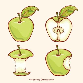 Зеленые яблоки иллюстрация
