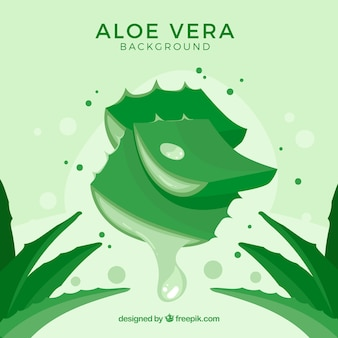 Green background of aloe vera leaves