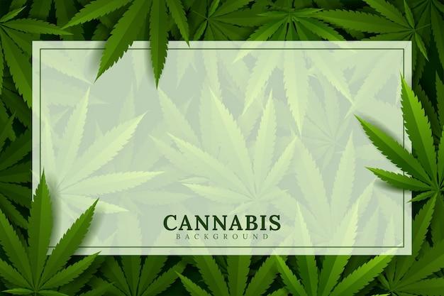 Green background. cannabis marijuana in medical
