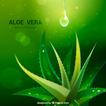 Green background with aloe vera and drops