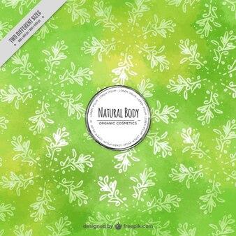 Sfondo verde con foglie di ulivo