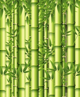 A green bamboo background