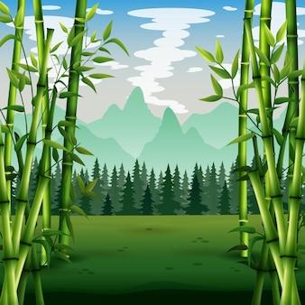 森の中の緑の竹の木