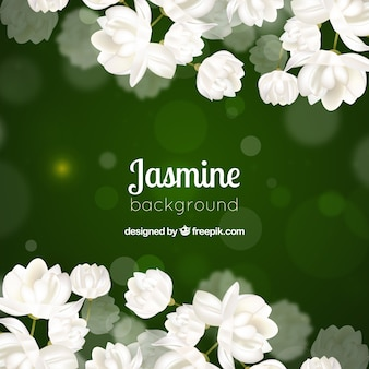 Green bokeh background of white flowers