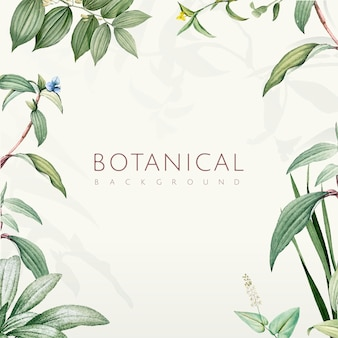 Green botanical leaves background design
