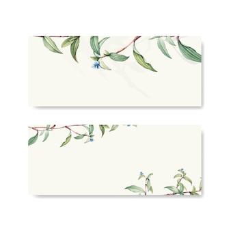 Green botanical leaves background design