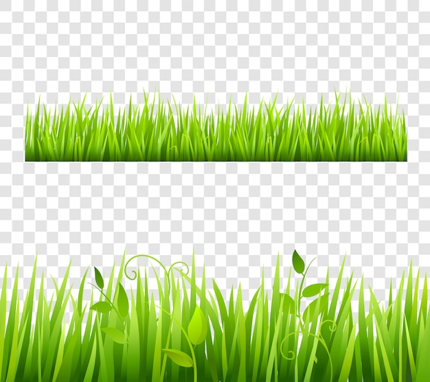 Green and bright grass border tileable transparent with plants