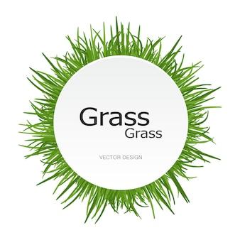 緑の明るい草の丸いフレーム。サークル
