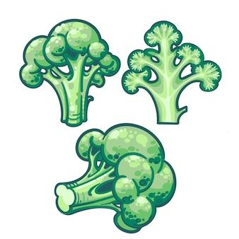 Зеленая брокколи рисованной изолированных иллюстрация. изолированные на белом фоне. визитка.