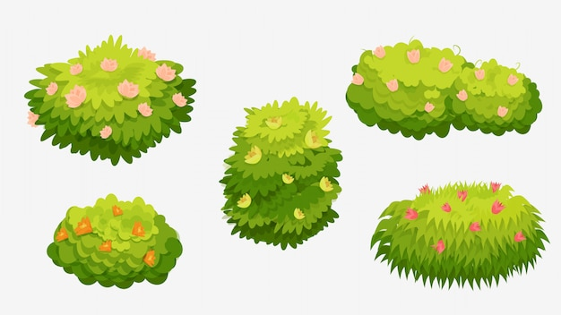 Green bushes with various flowers. green bushes with pink