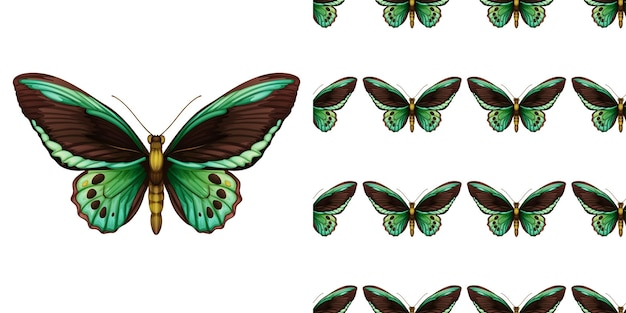 Зеленая бабочка и бесшовные