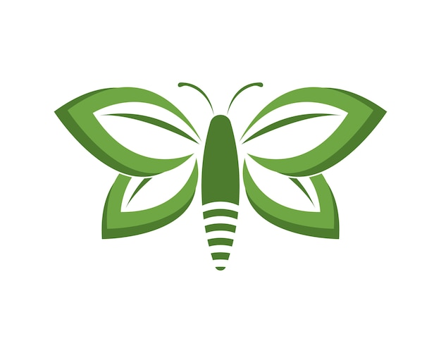 Green butterfly logo design template