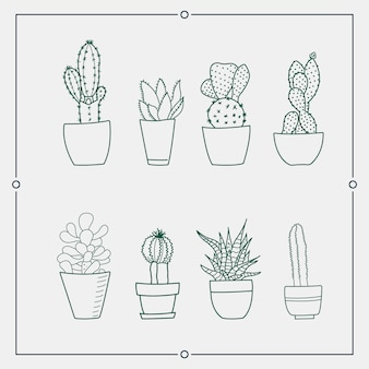 Green cactus in a pot vector illustrations.