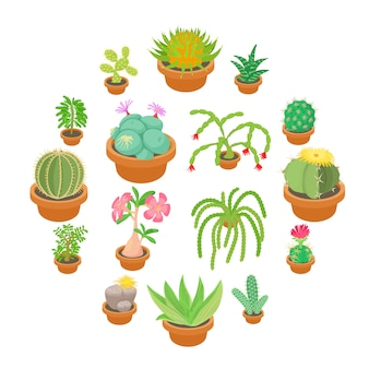 Green cactuses icons set, cartoon style