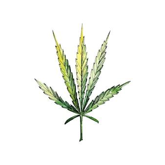 あなたのデザインプロジェクトのための緑の大麻の葉。水彩イラスト