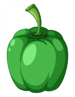 A green capsicum on white background