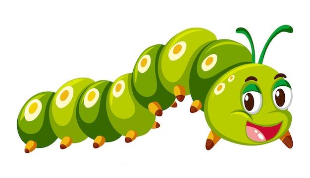 Green caterpillar crawling on white