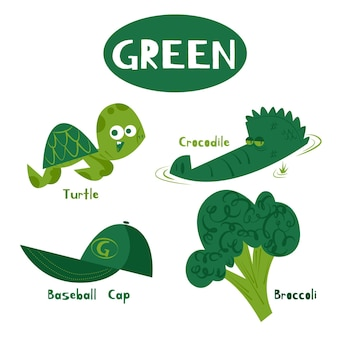녹색 색상과 어린이를위한 영어 어휘 세트