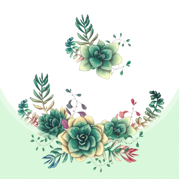 Green colorful succulents vector design