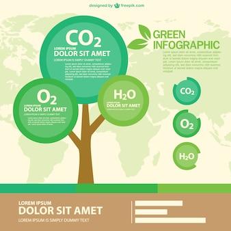 둥근 나무와 그린 에코 infographic