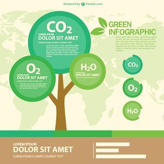 Green eco infographic with a round tree