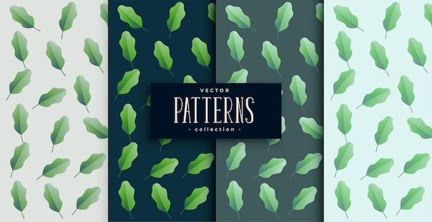 Зеленые эко листья бесшовный фон набор