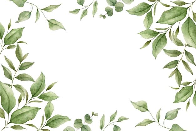 緑のユーカリは水彩画の花のフレームを残します