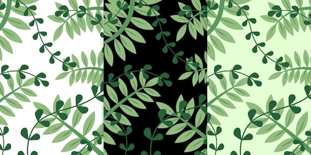 Зеленый экзотический папоротник тропические листья бесшовные модели премиум векторы