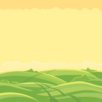 Пейзаж зеленого поля. поле колеи дороги.