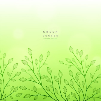 Green floral beautiful design background
