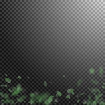 緑の花びらが落ちます。鮮やかなロマンチックな花のグラデーション。透明な正方形の背景に飛んでいる花びら。愛、恋愛の概念。古典的な結婚式の招待状。