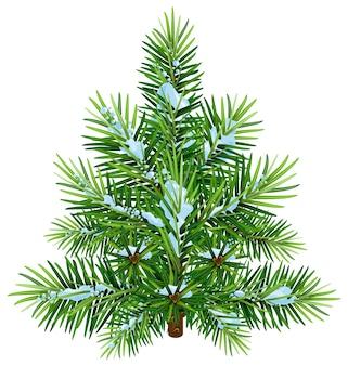 雪の中で緑のふわふわのクリスマス松の木。白いイラストで隔離