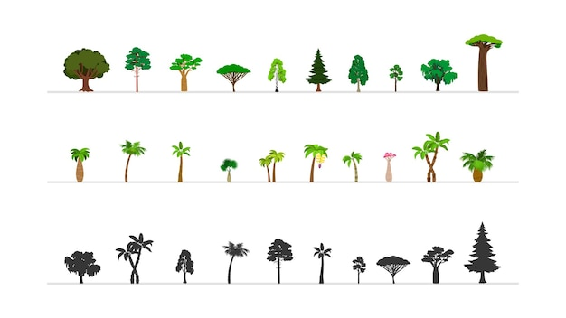 Набор зеленых лесных деревьев Premium векторы