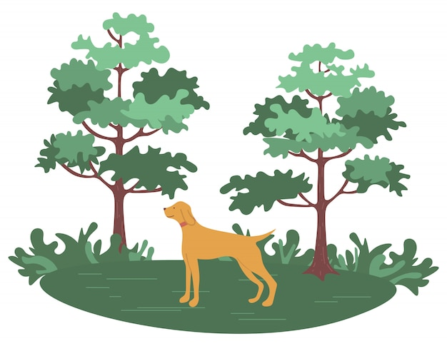 Green forest with trees and bushes and hunting dog