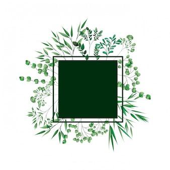 가지와 녹색 프레임 및 잎