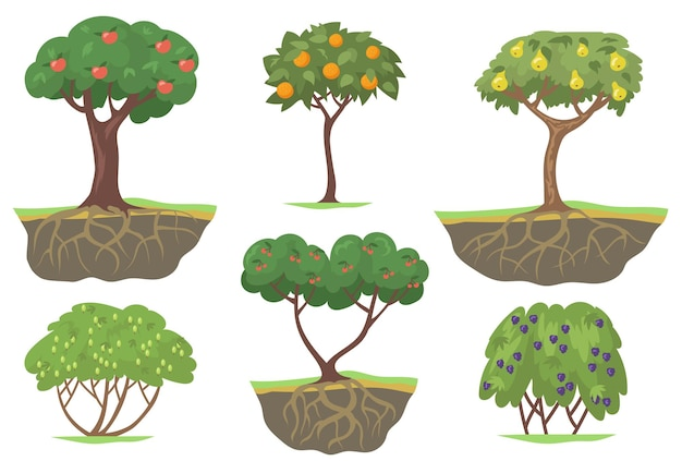 Green fruit trees and berry bushes flat set