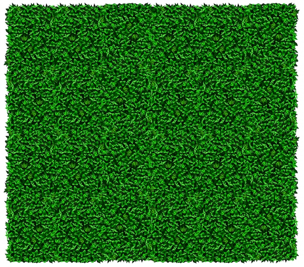 Green grape or ivy wall texture