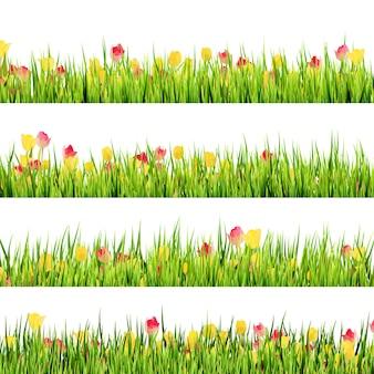 緑の芝生と美しい春の花。