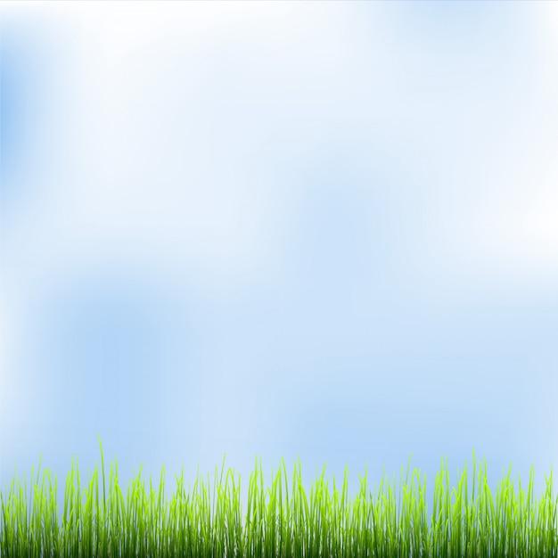 푸른 잔디와 푸른 하늘