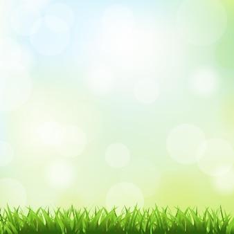 푸른 잔디와 봄 배경입니다.