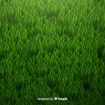 Green grass background realisitic design