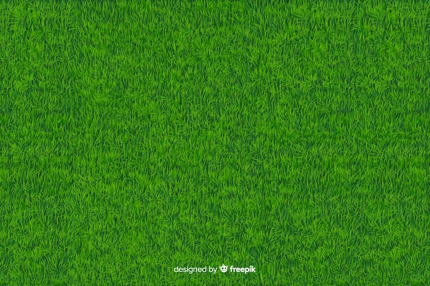 Green grass background realistic style