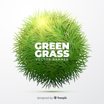 Green grass banner realistic style